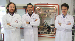 New Bilkent NANOTAM Project Aims to Enhance Food Safety in Refrigerators