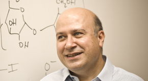 Prof. Akkaya Named Brain Pool Fellow