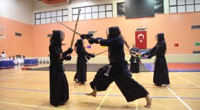 Bilkent Holds First Martial Arts Festival