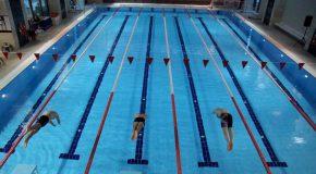 Fall Swim Challenge Starts Next Week