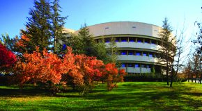 Faculty Librarians Offer Support to Bilkent Researchers