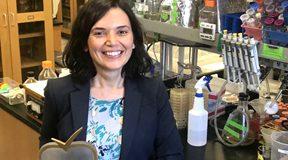 This Year's Sabri Ülker Science Award Goes to MBG Graduate